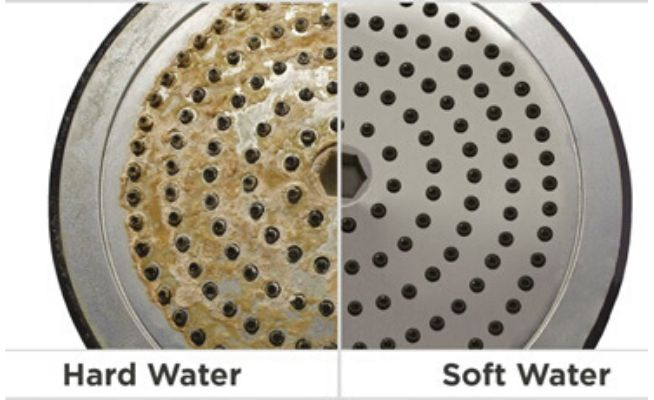 Debris Clogs Your Shower Head