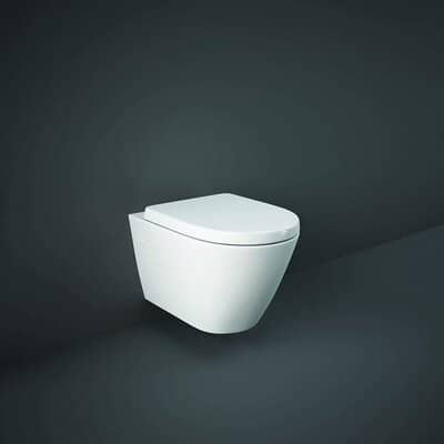 Compact D Shape Wall Hung Toilet