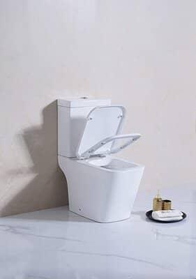 Sorrento Rimless Open Back Toilet